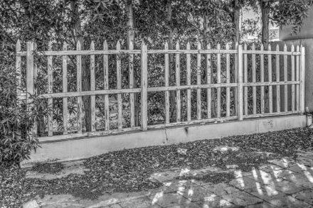Image - Picket Fence