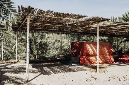 Carport with date palm roofing
