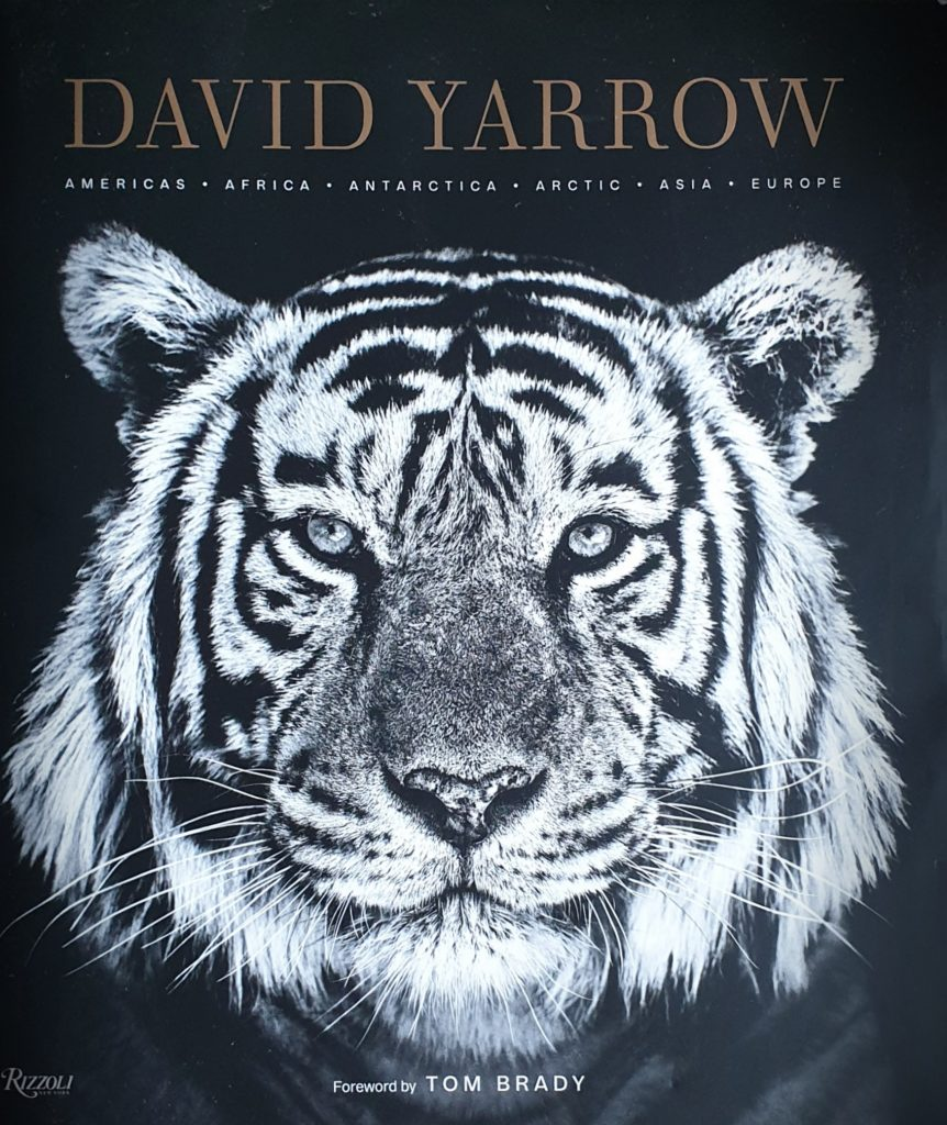Book review - cover - David Yarrow photography